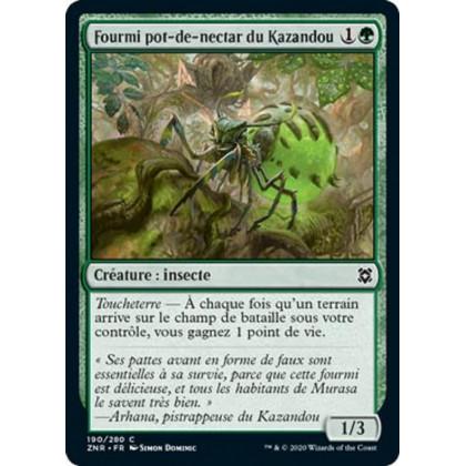 image ZNR_190/280 Fourmi pot-de-nectar du Kazandou